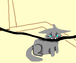Crying cat biting a wire meme