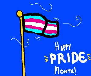 Transgender flag waves in the wind