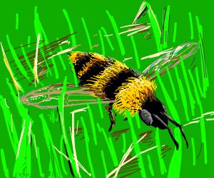 bee flying through grass