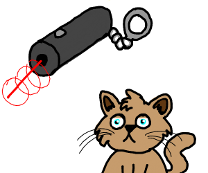 Laser pointer and a cat
