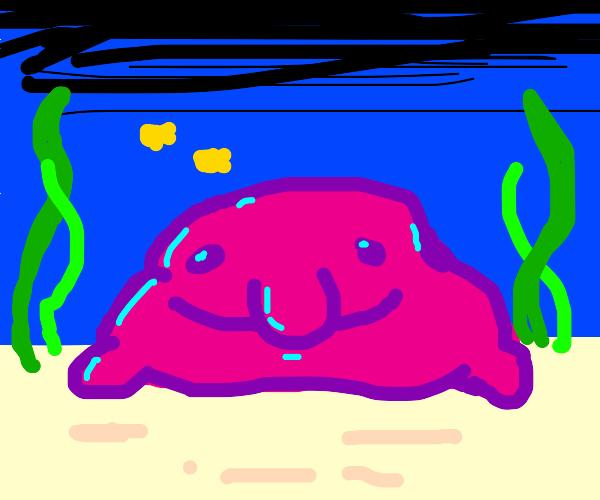 cute blob fish