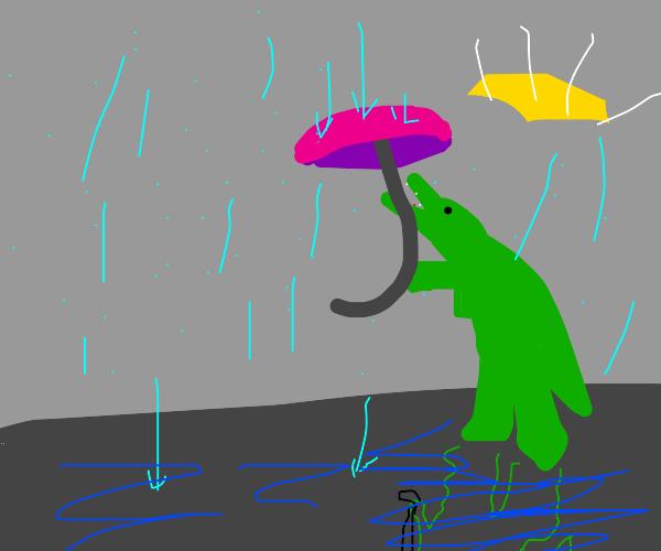 Alligator with umbrella stands in the rain
