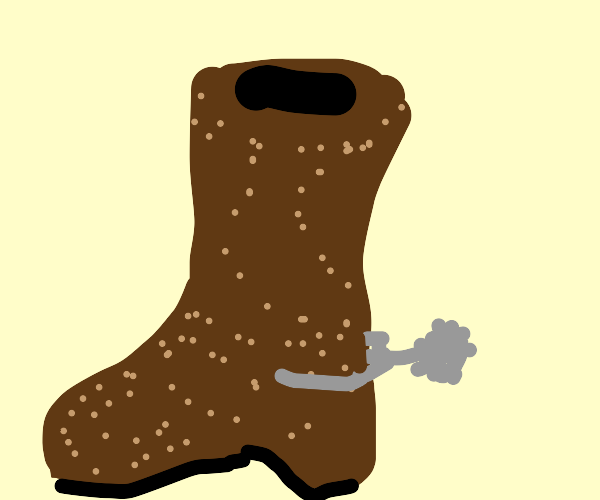 One single cowboy boot