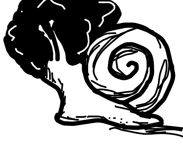 snail with an afro