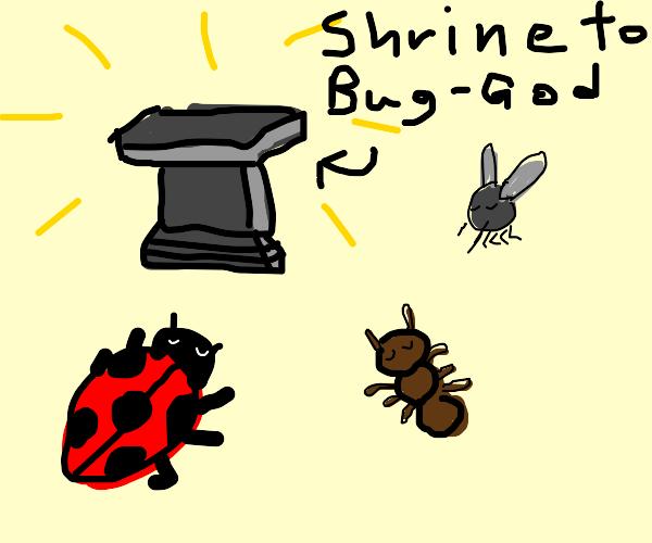 Bug religion