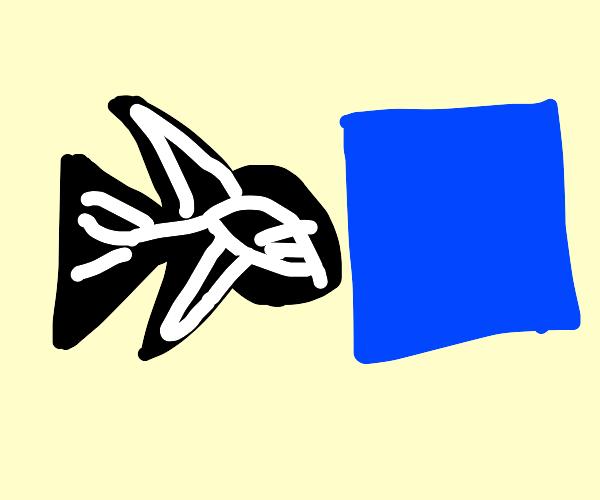 X-ray Fish pushing a Square