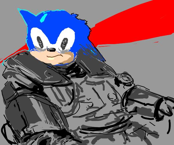 Sonic the transformer