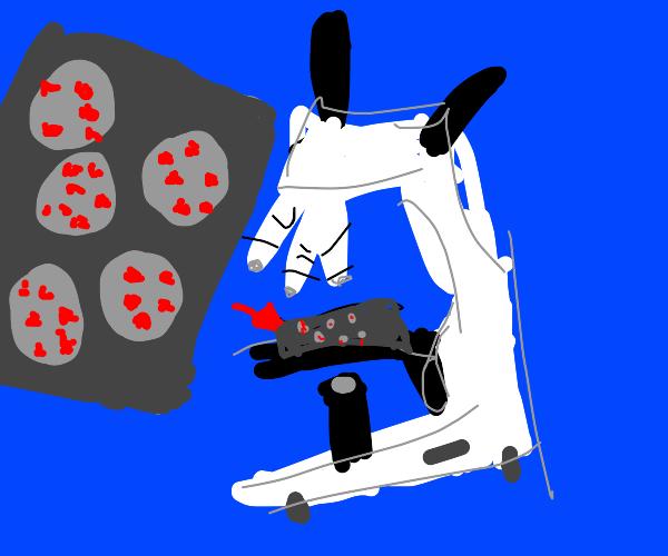 micro-organisms under a microscope