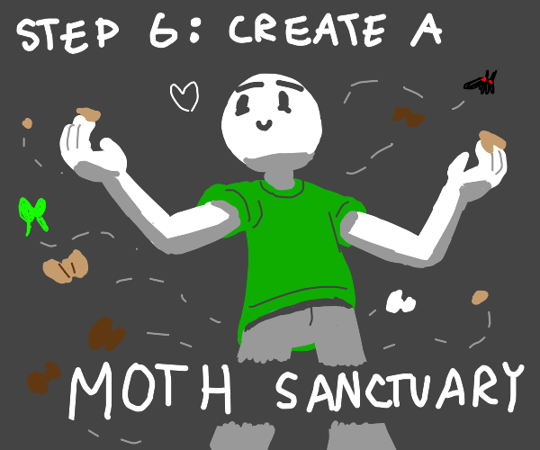 Step 5: The moths thank you for feeding them