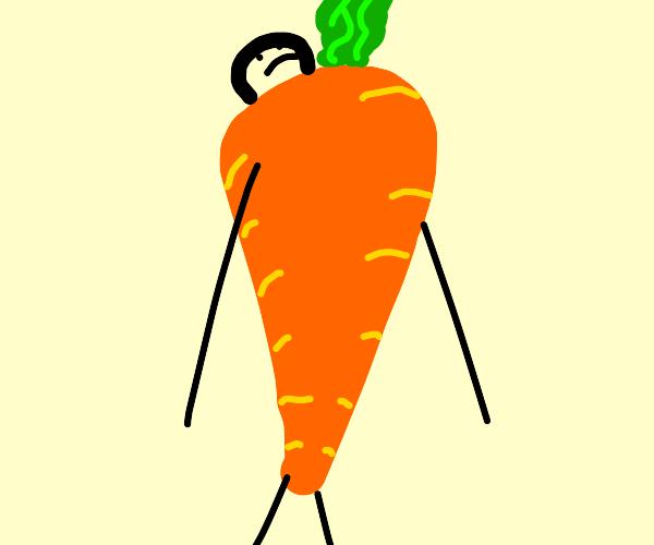 carrot human hybrid