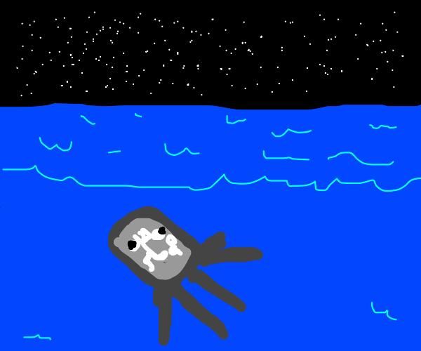 Minecraft Squid at night