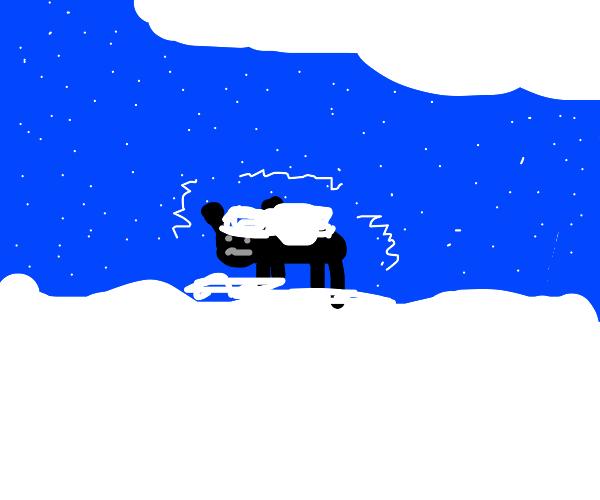 Beetle in a Blizzard