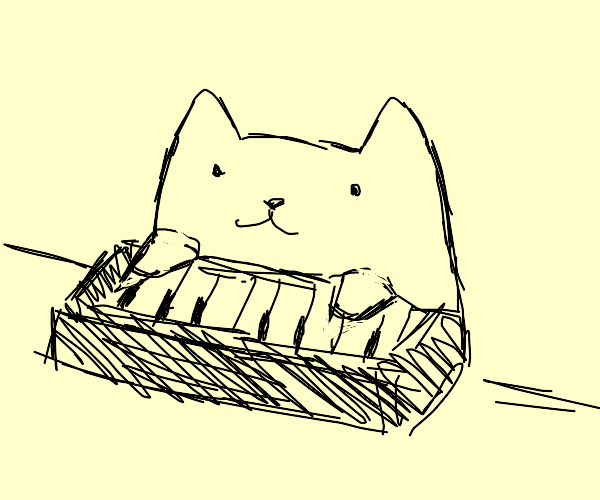 Keyboard cat returns