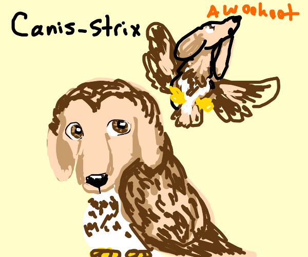 Dog bird thingy