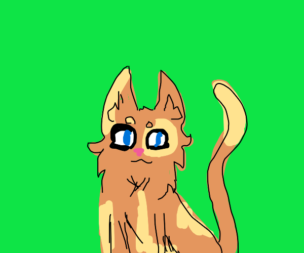 warrior cats oc