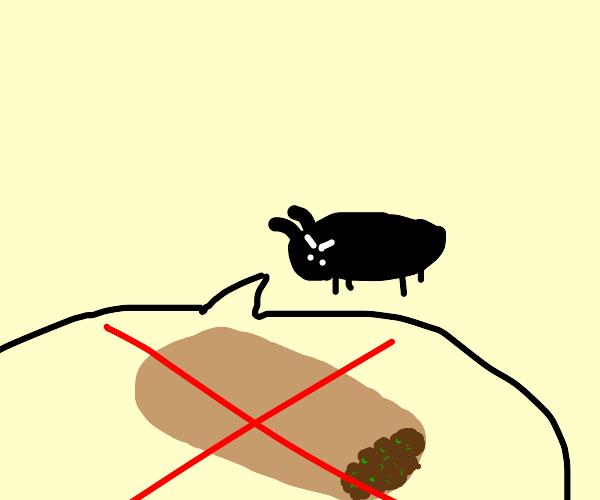 Beetle hates Burrito