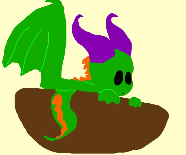 Dragon in a bowl