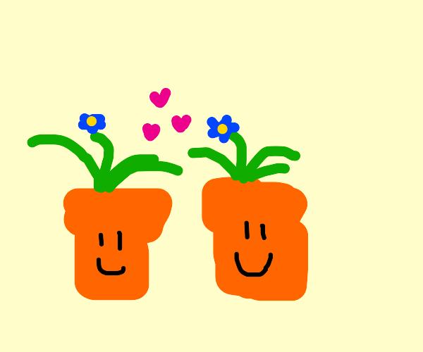flowerpots in love