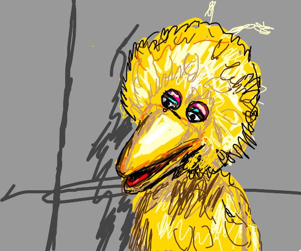 Big Bird (Caroll Spinney RIP)