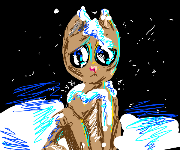 Sad, cold kitten covered in snow