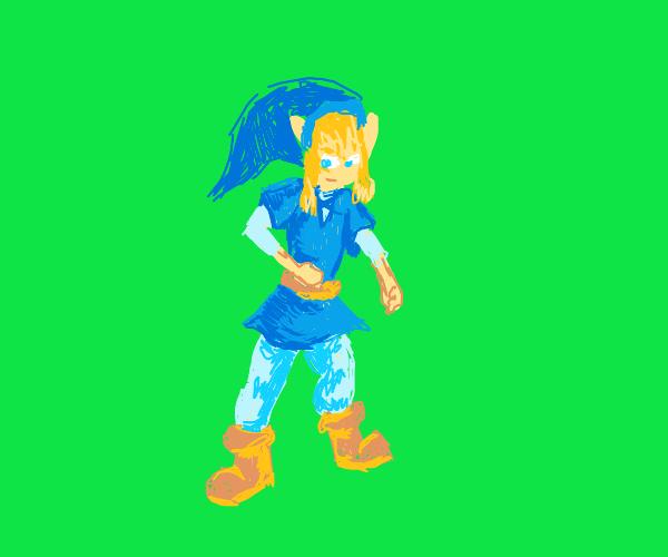 link from legend of zelda wearing blue