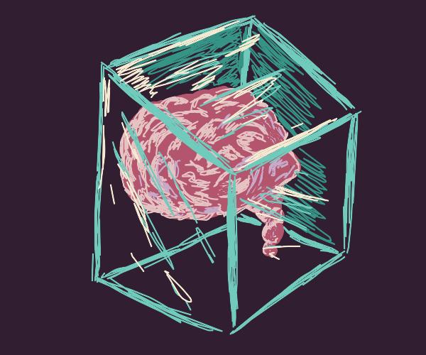 A brain in a glass box