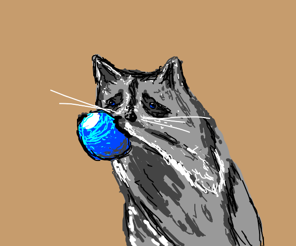 Raccoon holding blue ball
