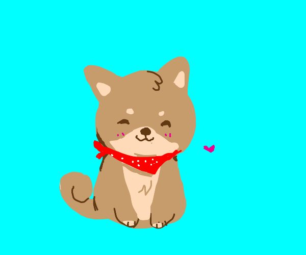 A Shiba Inu Puppy