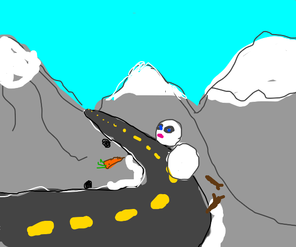 A Snowball crossing the Highway
