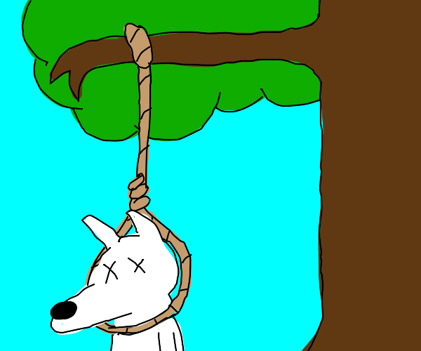 A dog hanging on a noose from a tree