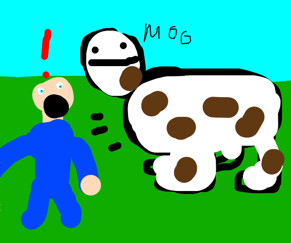 stay away from the cow
