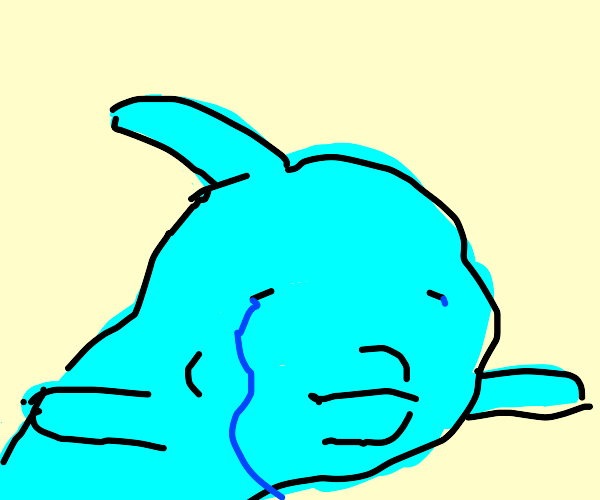 sad dolphin