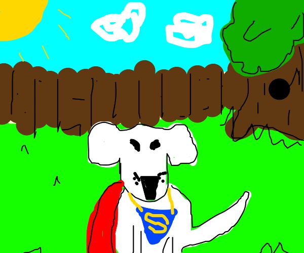 Superman's pal