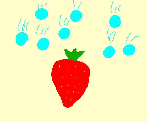 Strawberry in a Hailstorm
