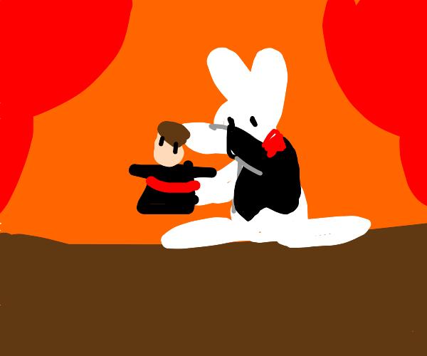 rabbit magician