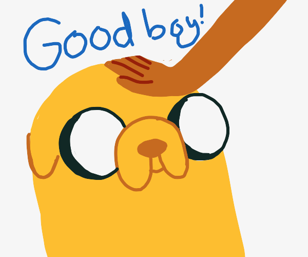 Jake the dog is a good boy