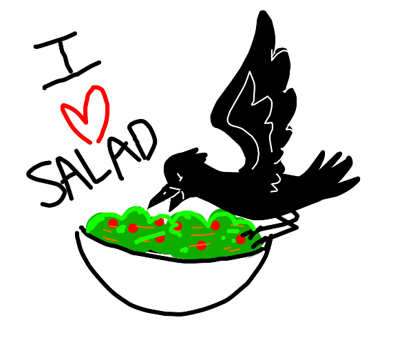 a crow loves salad