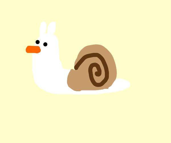 Snail duck hybrid