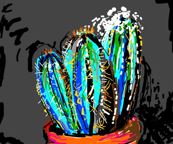 Blue cactus with salt on it