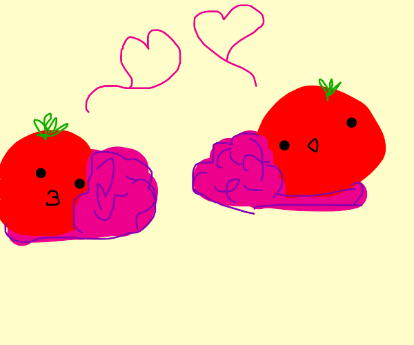 tomato slippers love eachother