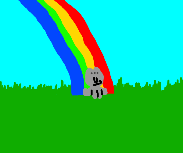 Cat at the end of the rainbow