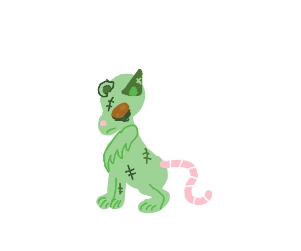 rat/ cat zombie hybrid
