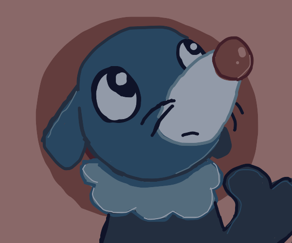 Worried circus seal