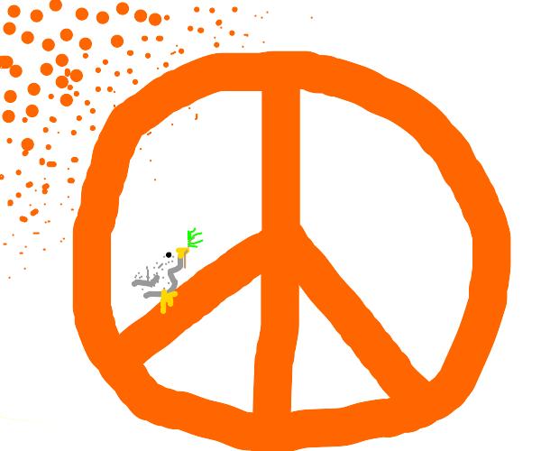 peace tangerine