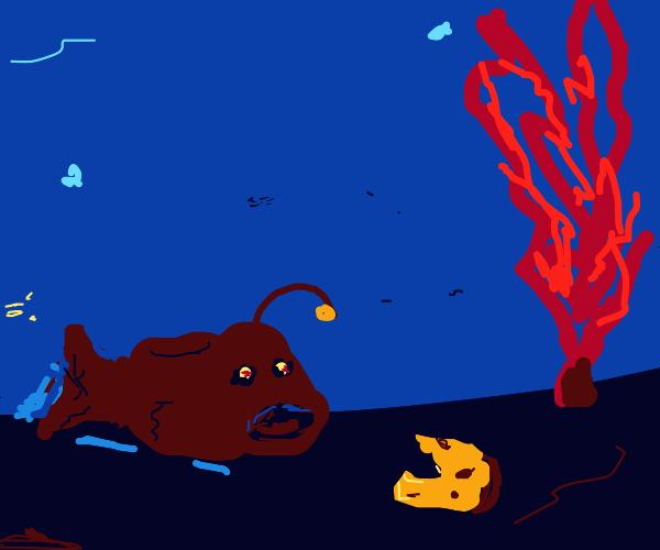 angler fish find half eaten piece of bread