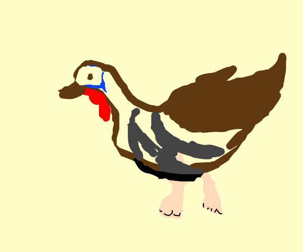 turkey with human legs