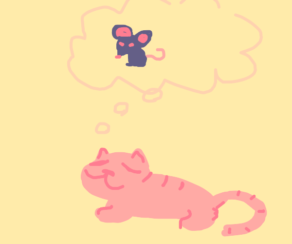 Cat thinks about mice