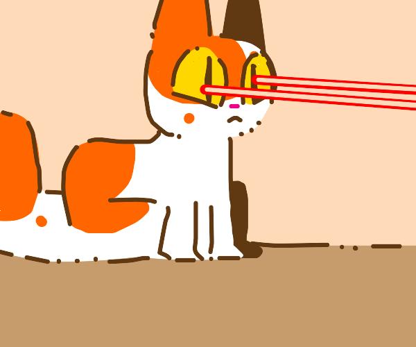 Cat evolves laser eyes
