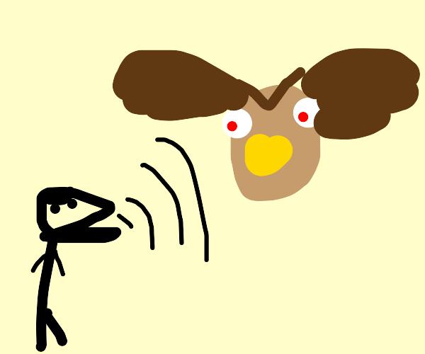 Man yells at late owl