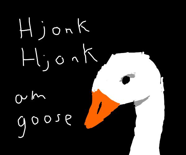 Hjonk Hjonk am goose